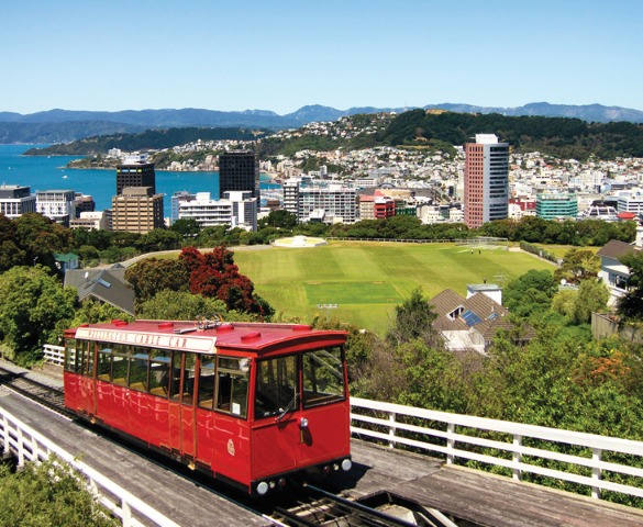 New Zealand's car market in focus